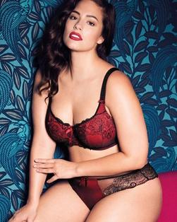 Bra and Knickers 2 Image - Plus Size Bra's